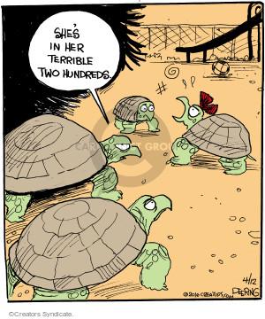 Comic Strip John Deering  Strange Brew 2016-04-12 turtle