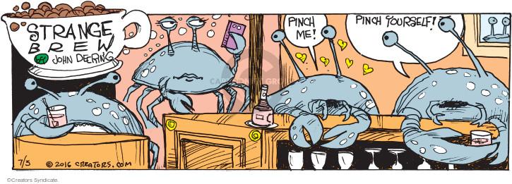 Comic Strip John Deering  Strange Brew 2016-07-03 line