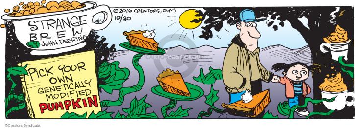 Comic Strip John Deering  Strange Brew 2016-10-30 pumpkin pie