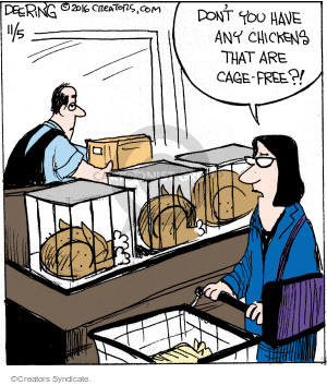 Dont you have any chickens that are cage-free?!