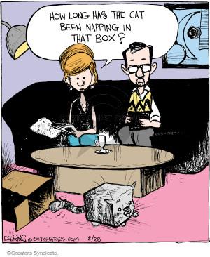 Comic Strip John Deering  Strange Brew 2017-08-28 cat box