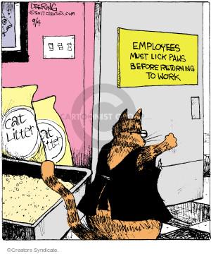 Comic Strip John Deering  Strange Brew 2017-09-04 cat litter