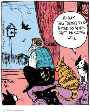 Comic Strip John Deering  Strange Brew 2017-09-15 bird