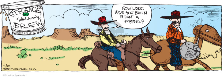 How long have you been ridin a hybrid?