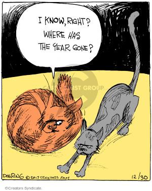 Comic Strip John Deering  Strange Brew 2017-12-30 cat