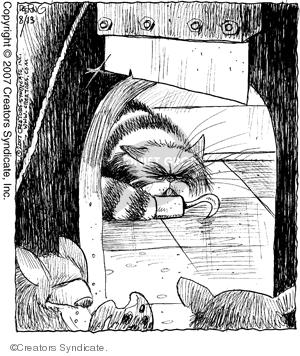 Comic Strip John Deering  Strange Brew 2007-08-13 cat