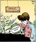 Cartoonist John Deering  Strange Brew 2011-07-20 gardening
