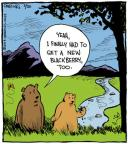 Cartoonist John Deering  Strange Brew 2013-05-20 wildlife