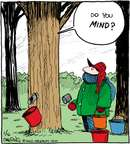 Cartoonist John Deering  Strange Brew 2015-01-16 maple