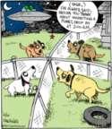 Comic Strip John Deering  Strange Brew 2017-04-10 dog