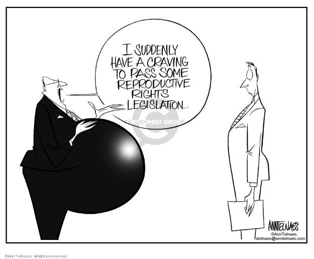 Cartoonist Ann Telnaes  Ann Telnaes' Editorial Cartoons 2003-01-10 legislation