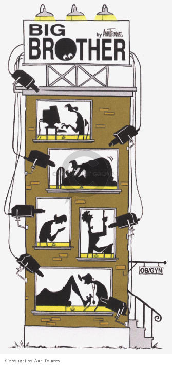Cartoonist Ann Telnaes  Ann Telnaes' Editorial Cartoons 2000-07-10 computer monitor