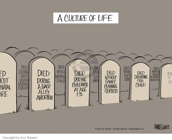 Ann Telnaes  Ann Telnaes' Editorial Cartoons 2005-04-01 death