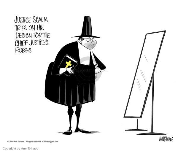 Ann Telnaes  Ann Telnaes' Editorial Cartoons 2005-01-24 court
