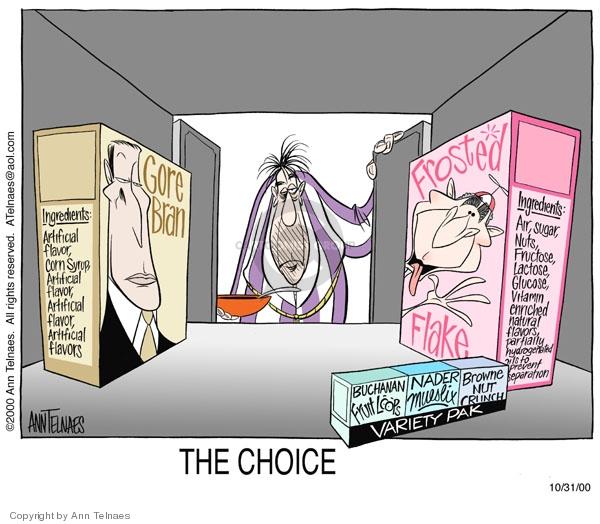 Ann Telnaes  Ann Telnaes' Editorial Cartoons 2000-10-31 personality