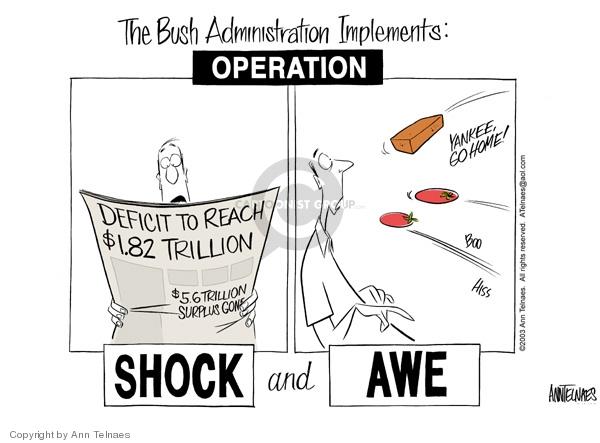 Cartoonist Ann Telnaes  Ann Telnaes' Editorial Cartoons 2003-03-09 home security