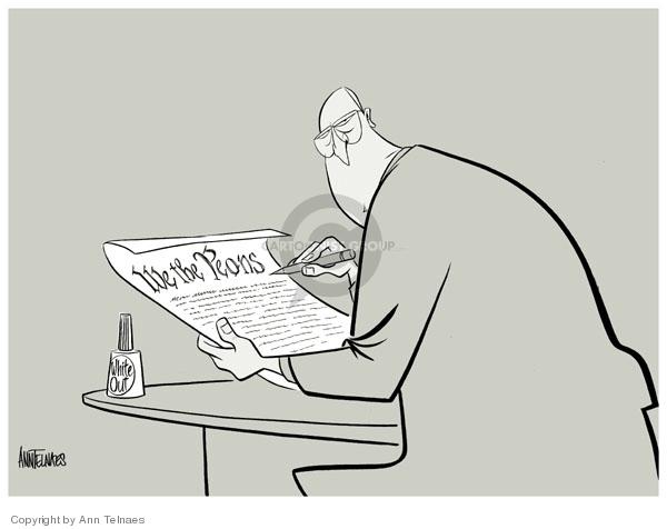 Ann Telnaes  Ann Telnaes' Editorial Cartoons 2006-11-05 civil