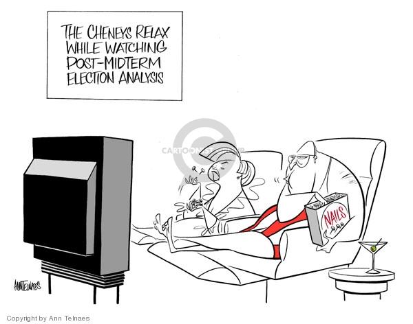 Cartoonist Ann Telnaes  Ann Telnaes' Editorial Cartoons 2006-11-14 majority