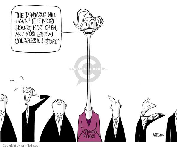 Cartoonist Ann Telnaes  Ann Telnaes' Editorial Cartoons 2007-01-04 democrat