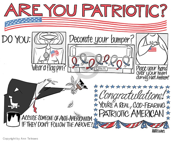 Ann Telnaes  Ann Telnaes' Editorial Cartoons 2008-02-26 patriotic