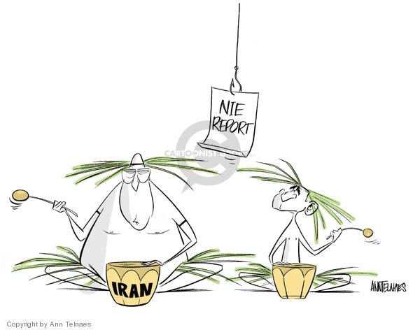 Cartoonist Ann Telnaes  Ann Telnaes' Editorial Cartoons 2007-12-03 Bush administration