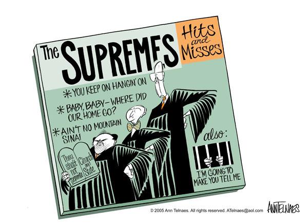 Ann Telnaes  Ann Telnaes' Editorial Cartoons 2005-06-28 judgment