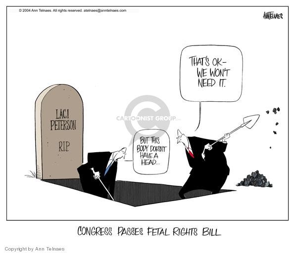 Cartoonist Ann Telnaes  Ann Telnaes' Editorial Cartoons 2004-03-28 Congress
