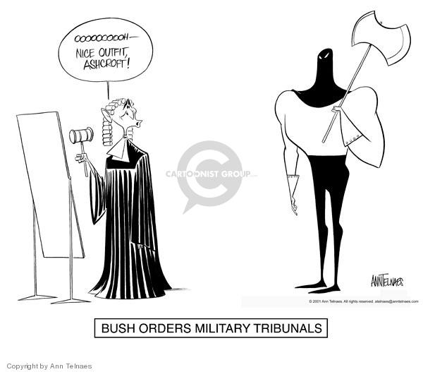 Cartoonist Ann Telnaes  Ann Telnaes' Editorial Cartoons 2001-11-17 branch of government