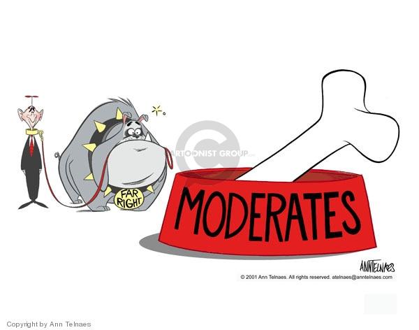 Cartoonist Ann Telnaes  Ann Telnaes' Editorial Cartoons 2001-07-30 conservative