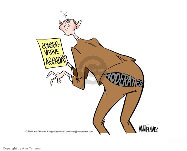 Ann Telnaes  Ann Telnaes' Editorial Cartoons 2001-05-24 partisan politics