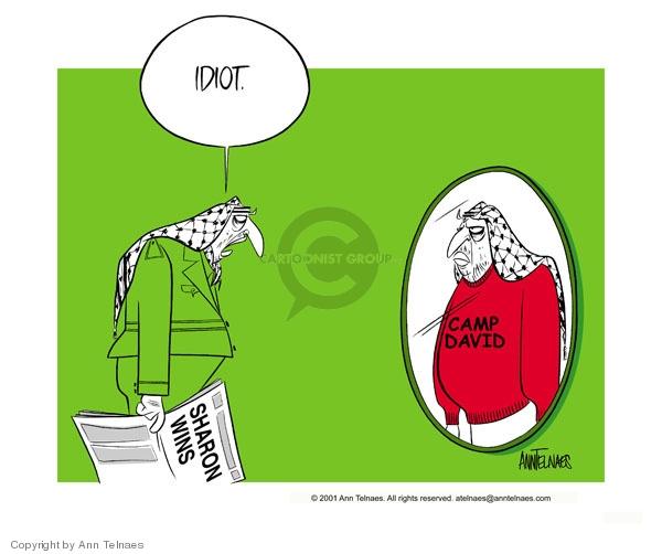 Ann Telnaes  Ann Telnaes' Editorial Cartoons 2001-02-07 international relations