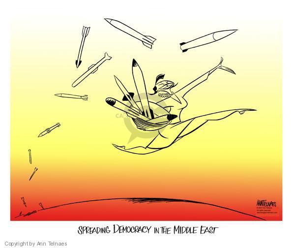 Cartoonist Ann Telnaes  Ann Telnaes' Editorial Cartoons 2007-08-01 democracy