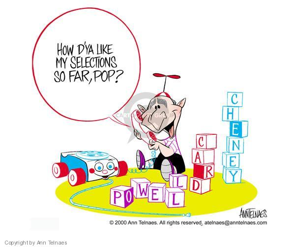 Ann Telnaes  Ann Telnaes' Editorial Cartoons 2000-11-27 presidential approval