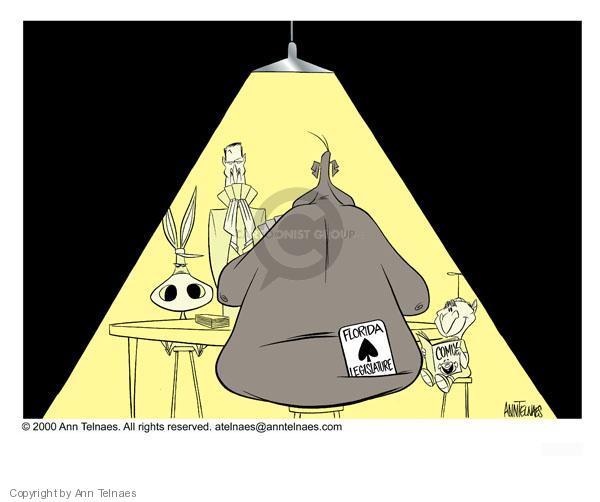 Ann Telnaes  Ann Telnaes' Editorial Cartoons 2000-12-07 vote