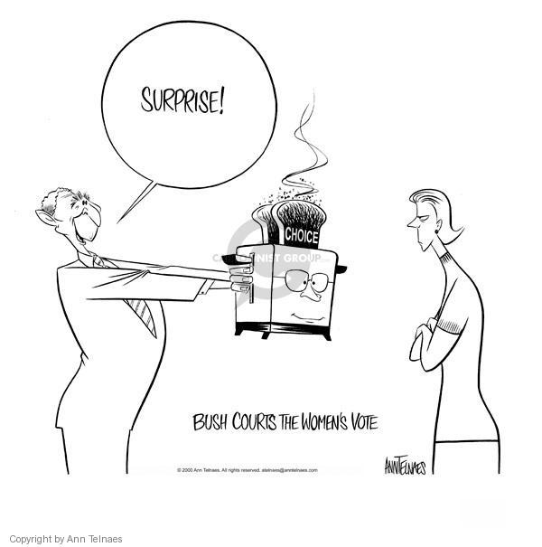 Cartoonist Ann Telnaes  Ann Telnaes' Editorial Cartoons 2000-07-28 voter