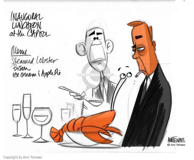 Ann Telnaes  Ann Telnaes' Editorial Cartoons 2013-02-21 eye