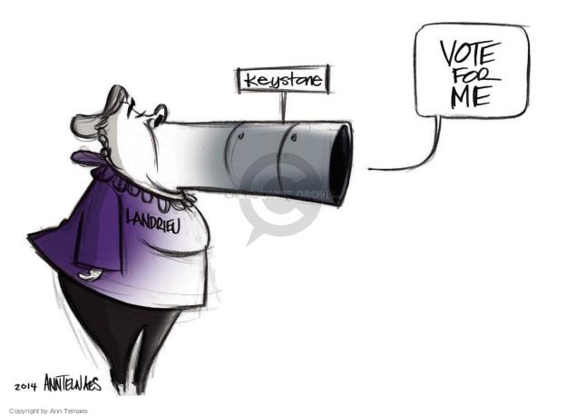 Ann Telnaes  Ann Telnaes' Editorial Cartoons 2014-11-17 2014 election