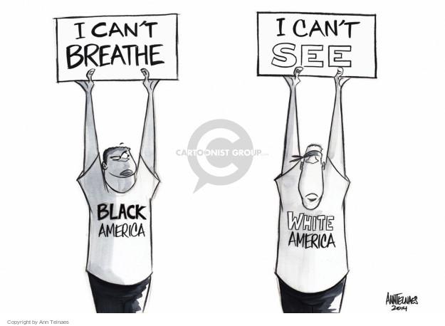 Ann Telnaes  Ann Telnaes' Editorial Cartoons 2014-12-04 racial