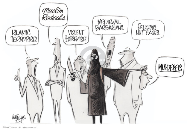 Ann Telnaes  Ann Telnaes' Editorial Cartoons 2015-02-19 case