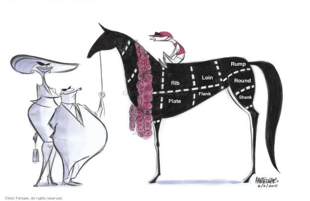 Ann Telnaes  Ann Telnaes' Editorial Cartoons 2015-06-06 cut