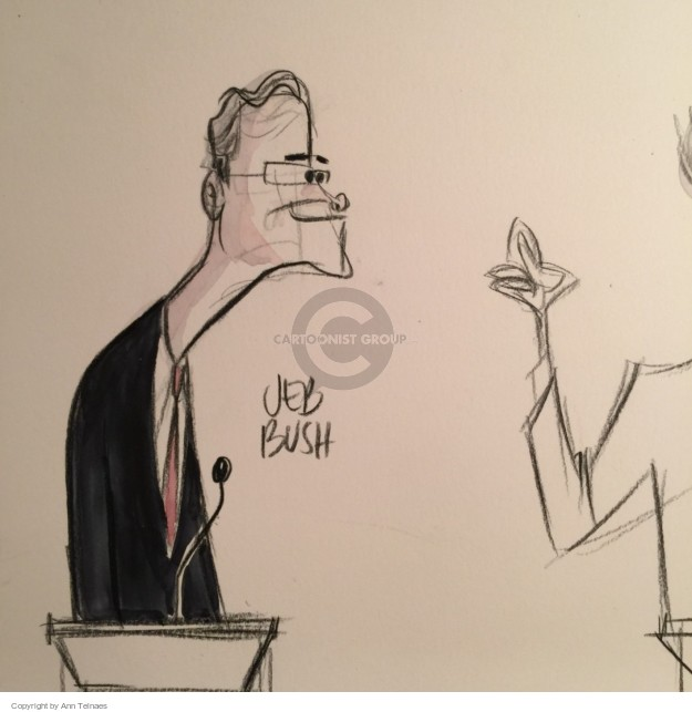 Ann Telnaes  Ann Telnaes' Editorial Cartoons 2015-11-11 bush