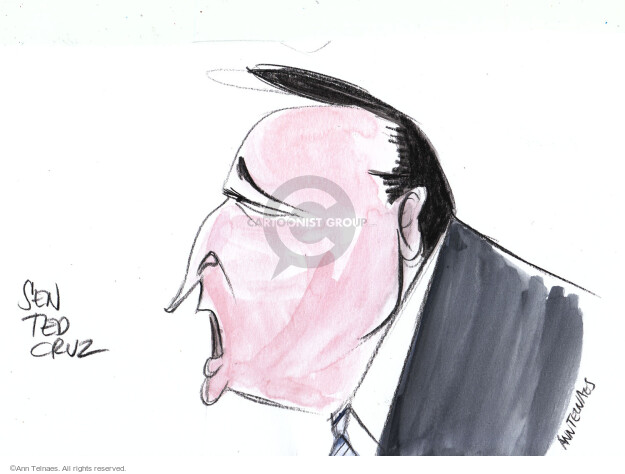 Ann Telnaes  Ann Telnaes' Editorial Cartoons 2016-02-18 face