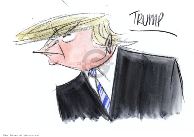 Ann Telnaes  Ann Telnaes' Editorial Cartoons 2016-02-19 face