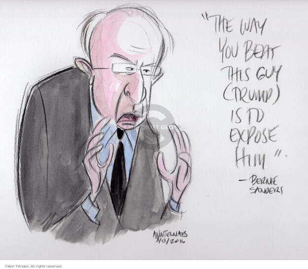 Ann Telnaes  Ann Telnaes' Editorial Cartoons 2016-03-13 guy