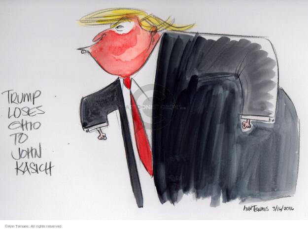 Cartoonist Ann Telnaes  Ann Telnaes' Editorial Cartoons 2016-03-16 governor