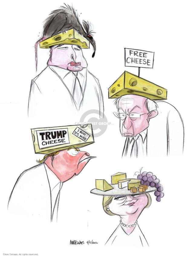 Ann Telnaes  Ann Telnaes' Editorial Cartoons 2016-04-05 2016 Election Bernie Sanders