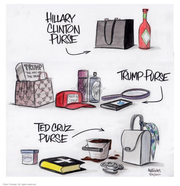 Cartoonist Ann Telnaes  Ann Telnaes' Editorial Cartoons 2016-04-21 book