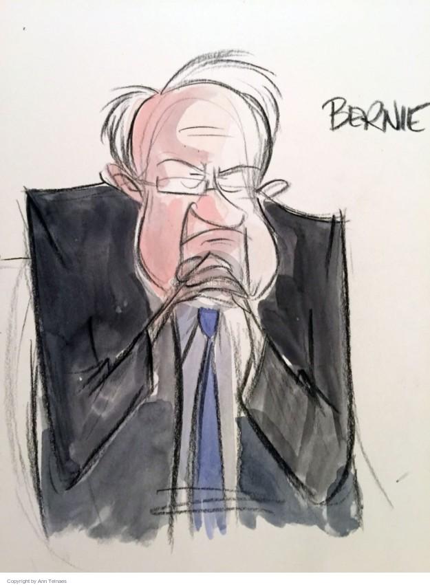 Ann Telnaes  Ann Telnaes' Editorial Cartoons 2016-07-29 2016 Election Bernie Sanders