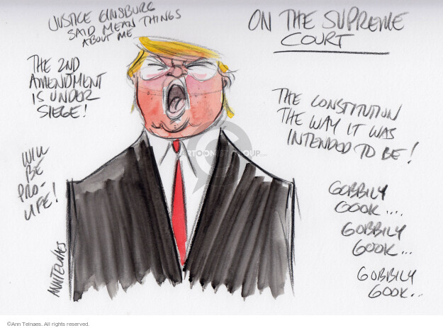 Ann Telnaes  Ann Telnaes' Editorial Cartoons 2016-10-20 supreme court nominee