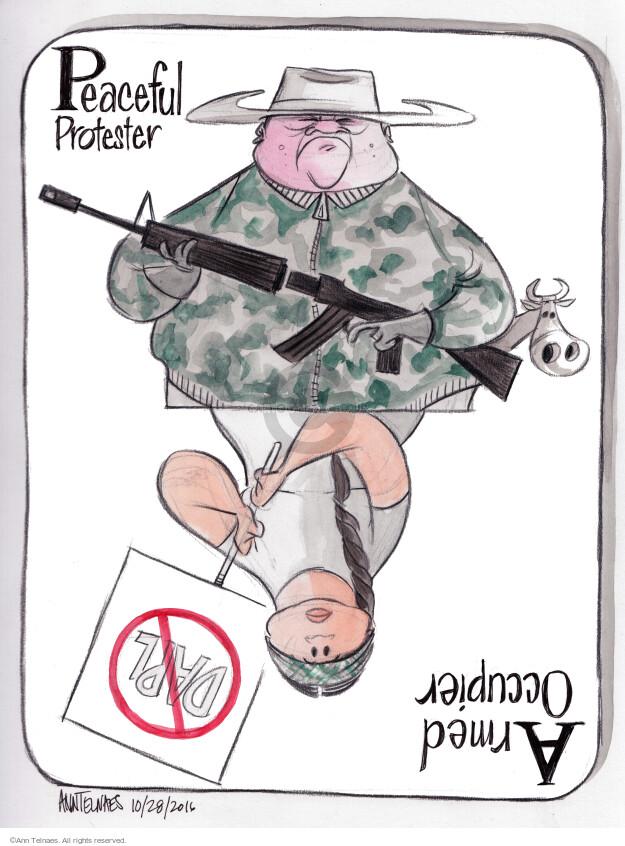 Cartoonist Ann Telnaes  Ann Telnaes' Editorial Cartoons 2016-10-28 gun rights
